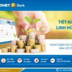 Tiết kiệm linh hoạt – giải pháp hoạch định tài chính tối ưu của BaoViet Bank