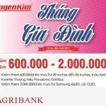 Nguyễn Kim - Tháng của gia đình dành cho khách hàng Agribank