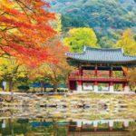 Tận hưởng ưu đãi đặc biệt từ Klook cho Thẻ tín dụng Shinhan