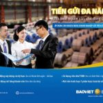 Tiền gửi đa năng - Linh hoạt nguồn vốn, chủ động đầu tư cùng BaoViet Bank