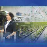 BIDV triển khai gói vay sản xuất kinh doanh 10 nghìn tỷ đồng, lãi suất từ 6,5%/năm
