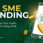 OCB chính thức triển khai OCB SME e-Lending